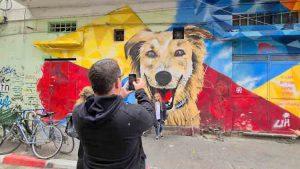 בי תל אביב סיור גרפיטי